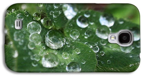 Rollosphotos Digital Art Galaxy S4 Cases - Water Drops On Green Clover Galaxy S4 Case by Christina Rollo
