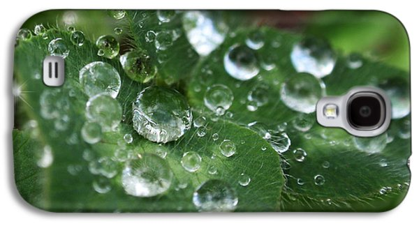 Water Drops On Green Clover Galaxy S4 Case by Christina Rollo