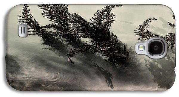Ferns Galaxy S4 Cases - Water Fronds Galaxy S4 Case by Dave Bowman