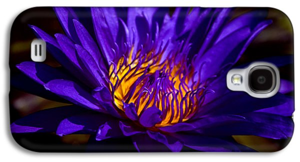 Nature Center Pond Galaxy S4 Cases - Water Lily 7 Galaxy S4 Case by Julie Palencia