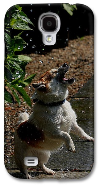 Dog In Landscape Galaxy S4 Cases - Waterjump Galaxy S4 Case by Aidan Moran