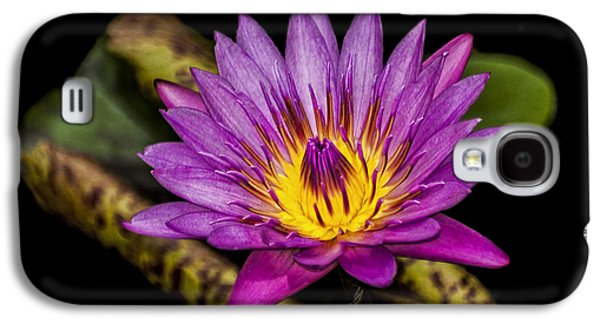 Waterscape Galaxy S4 Cases - Waterlily Galaxy S4 Case by Carolyn Marshall