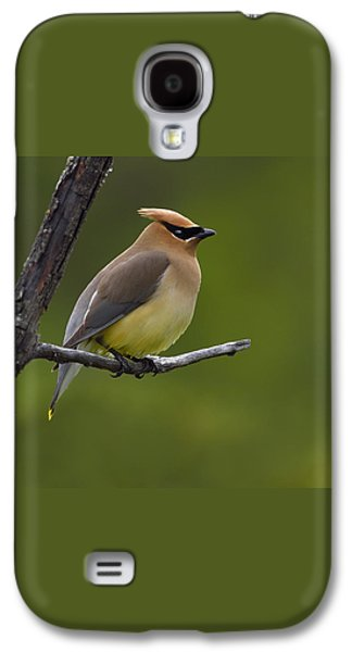 Wax On Galaxy S4 Case by Tony Beck