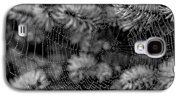 Macro Tapestries - Textiles Galaxy S4 Cases - Web Drops Galaxy S4 Case by Dennis Bucklin
