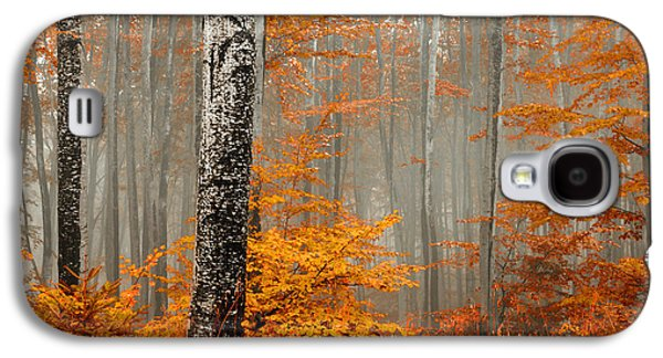 Fog Photographs Galaxy S4 Cases - Welcome to Orange Forest Galaxy S4 Case by Evgeni Dinev