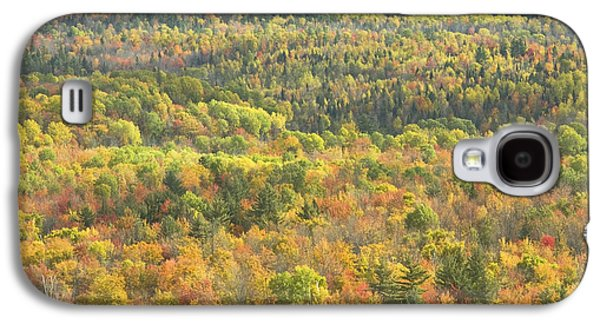 Maine Mountains Galaxy S4 Cases - Weld Maine Fall Forest In Mount Blue State Park Galaxy S4 Case by Keith Webber Jr