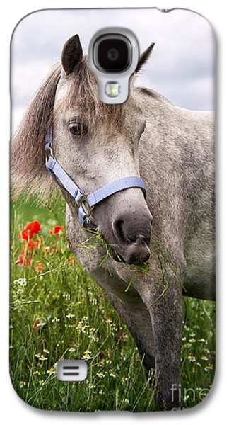 Horse Images Galaxy S4 Cases - Welsh Pony Lulu Galaxy S4 Case by Angela Doelling AD DESIGN Photo and PhotoArt