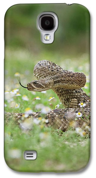 Western Diamondback Rattlesnake Galaxy S4 Case by Larry Ditto