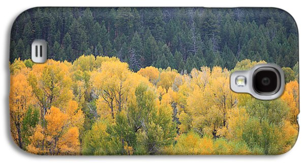 Autumn Landscape Pyrography Galaxy S4 Cases - Western Front Galaxy S4 Case by Betsy Barron