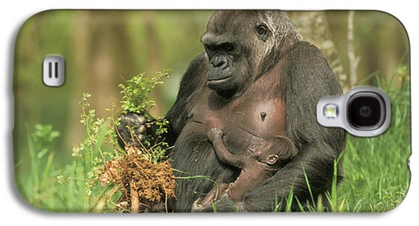 Western Gorilla And Young Galaxy S4 Case by M. Watson