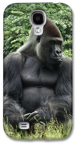 Western Lowland Gorilla Male Galaxy S4 Case by Konrad Wothe