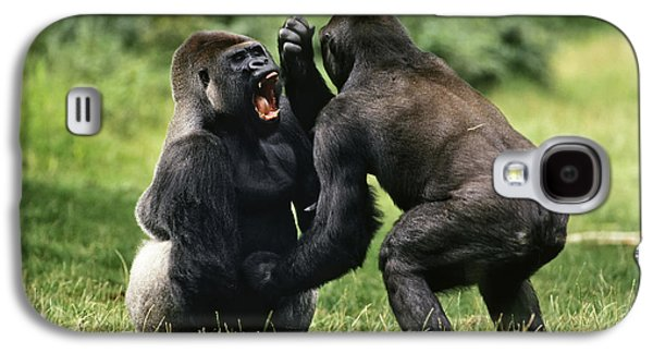 Western Lowland Gorilla Males Fighting Galaxy S4 Case by Konrad Wothe