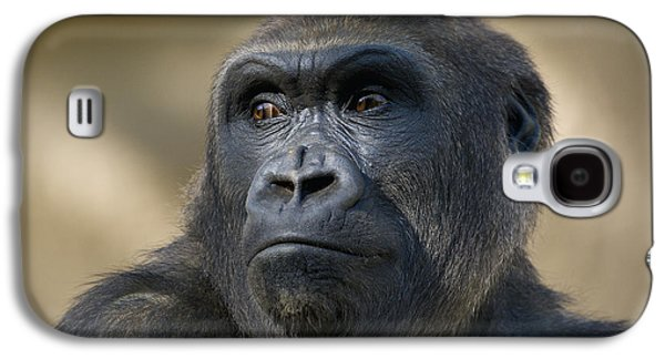 Western Lowland Gorilla Portrait Galaxy S4 Case by San Diego Zoo