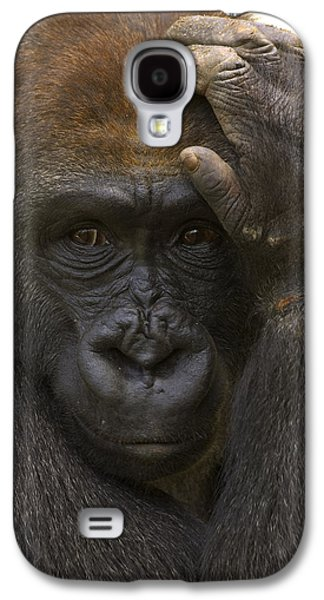 Western Lowland Gorilla With Hand Galaxy S4 Case by San Diego Zoo
