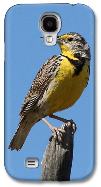 Western Meadowlark Perching Galaxy S4 Case by Bob and Jan Shriner
