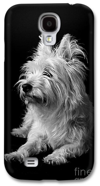 Catherine White Galaxy S4 Cases - Westie Galaxy S4 Case by Catherine Reusch  Daley