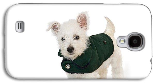 Westie Digital Galaxy S4 Cases - Westie Puppy in a Coat Galaxy S4 Case by Natalie Kinnear