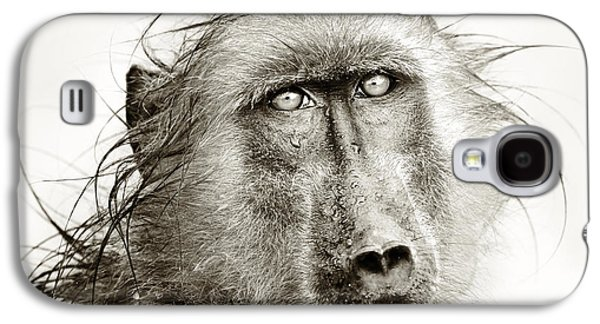 Nobody Photographs Galaxy S4 Cases - Wet Baboon portrait Galaxy S4 Case by Johan Swanepoel