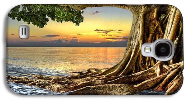 Tree Roots Photographs Galaxy S4 Cases - Wet Dreams Galaxy S4 Case by Debra and Dave Vanderlaan