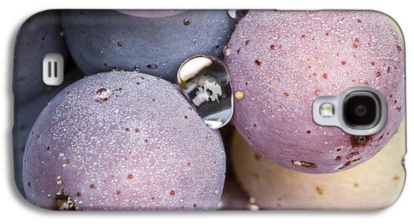 Vintner Galaxy S4 Cases - Wet Fruit Galaxy S4 Case by Jean Noren