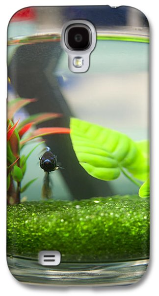 Betta Galaxy S4 Cases - What You Looking At Galaxy S4 Case by Rachel Trudgian