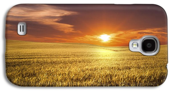 Agricultural Galaxy S4 Cases - Wheat Field Galaxy S4 Case by Aged Pixel