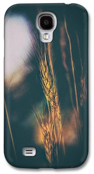 Dreamscape Galaxy S4 Cases - Wheat Of The Evening Galaxy S4 Case by Bob Orsillo