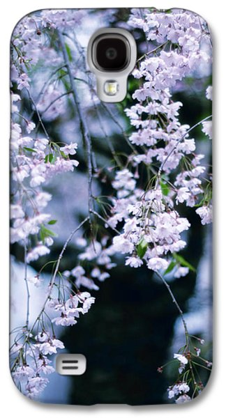 Cherry Blossoms Galaxy S4 Cases - Weeping Cherry Galaxy S4 Case by Jessica Jenney
