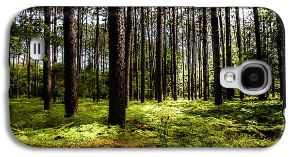 Nature Abstract Galaxy S4 Cases - WHEN the FOREST BECKONS Galaxy S4 Case by Karen Wiles