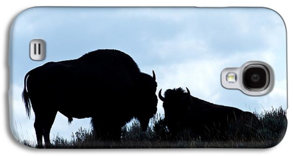 Bison Ceramics Galaxy S4 Cases - Where the Buffalo Roam Galaxy S4 Case by Nena Trapp