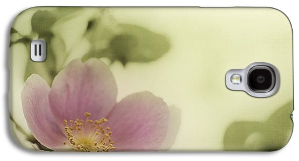 Where The Wild Roses Grow Galaxy S4 Case by Priska Wettstein