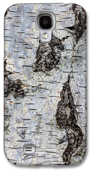 Beauty Mark Photographs Galaxy S4 Cases - White Birch Abstract  Galaxy S4 Case by Heidi Smith