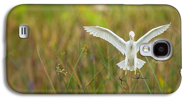 Religious Galaxy S4 Cases - White Bird 6 Galaxy S4 Case by Mario Labado