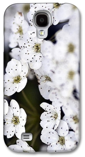 Garden Images Galaxy S4 Cases - White Blossoms Galaxy S4 Case by Frank Tschakert