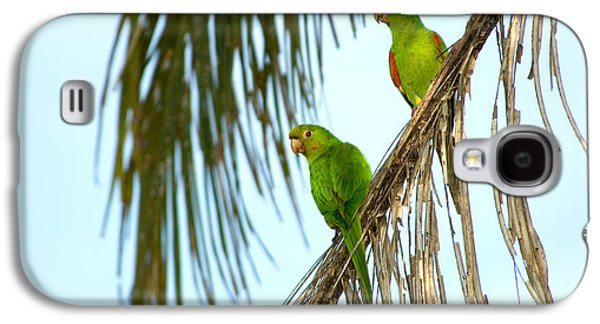 White-eyed Parakeets, Brazil Galaxy S4 Case by Gregory G. Dimijian, M.D.