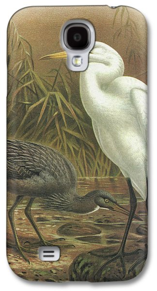 Heron Paintings Galaxy S4 Cases - White Heron and Reef Heron Galaxy S4 Case by J G Keulemans