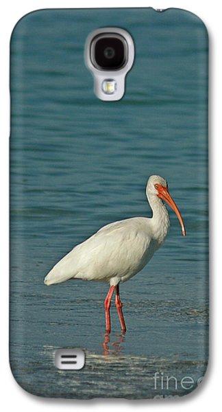White Ibis Galaxy S4 Case by Cindi Ressler