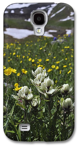 Unique View Galaxy S4 Cases - White Indian Paintbrushes Galaxy S4 Case by Aaron Spong