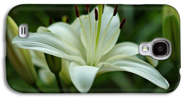White Lily Galaxy S4 Case by Sandy Keeton