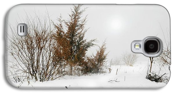 Trees In Snow Galaxy S4 Cases - White Magic Galaxy S4 Case by Diana Angstadt