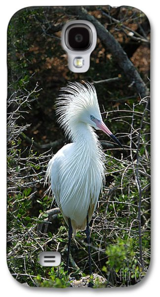 Morph Galaxy S4 Cases - White Morph Of Reddish Egret Galaxy S4 Case by Gregory G. Dimijian