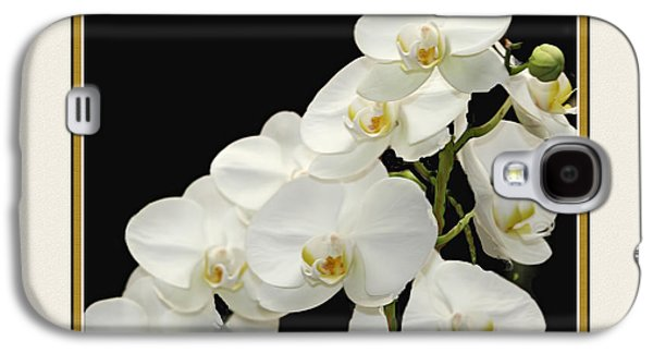 Garden Images Galaxy S4 Cases - White Orchids II Galaxy S4 Case by Tom Prendergast