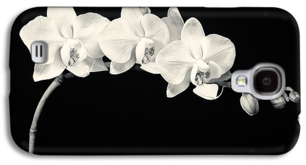 Interior Still Life Photographs Galaxy S4 Cases - White Orchids Monochrome Galaxy S4 Case by Adam Romanowicz