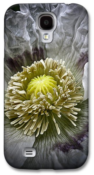 Garden Images Galaxy S4 Cases - White Poppy Galaxy S4 Case by Frank Tschakert