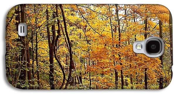 Autumn Landscape Jewelry Galaxy S4 Cases - White River Trail Galaxy S4 Case by BackHome Images
