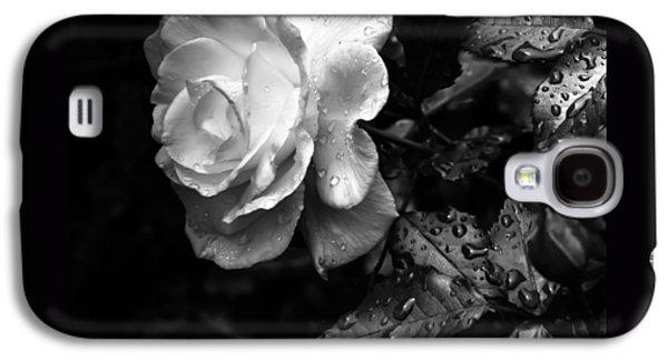 Rose Petals Galaxy S4 Cases - White Rose Full Bloom Galaxy S4 Case by Darryl Dalton