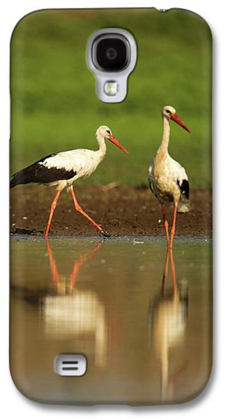 White Stork (ciconia Ciconia) Galaxy S4 Case by Photostock-israel