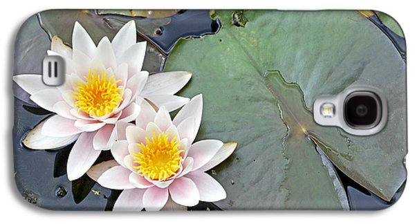 Lilly Pad Galaxy S4 Cases - White Water Lilies Netherlands Galaxy S4 Case by Jelger Herder