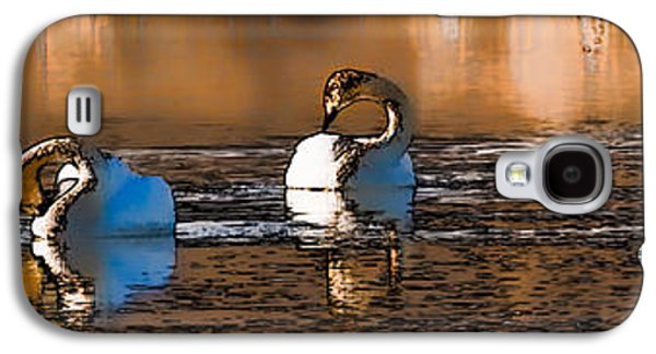 Paiting Galaxy S4 Cases - Whooper Swan  P by Leif Sohlman Galaxy S4 Case by Leif Sohlman
