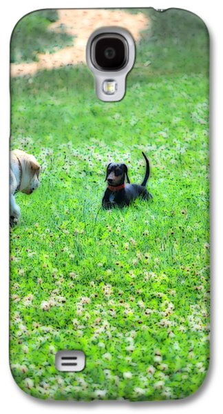 Dachshund Puppy Digital Art Galaxy S4 Cases - Whos This Galaxy S4 Case by Kathy Sampson
